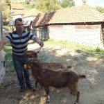dodela_koze_porodici_slavise_ristica_iz_jasenovika